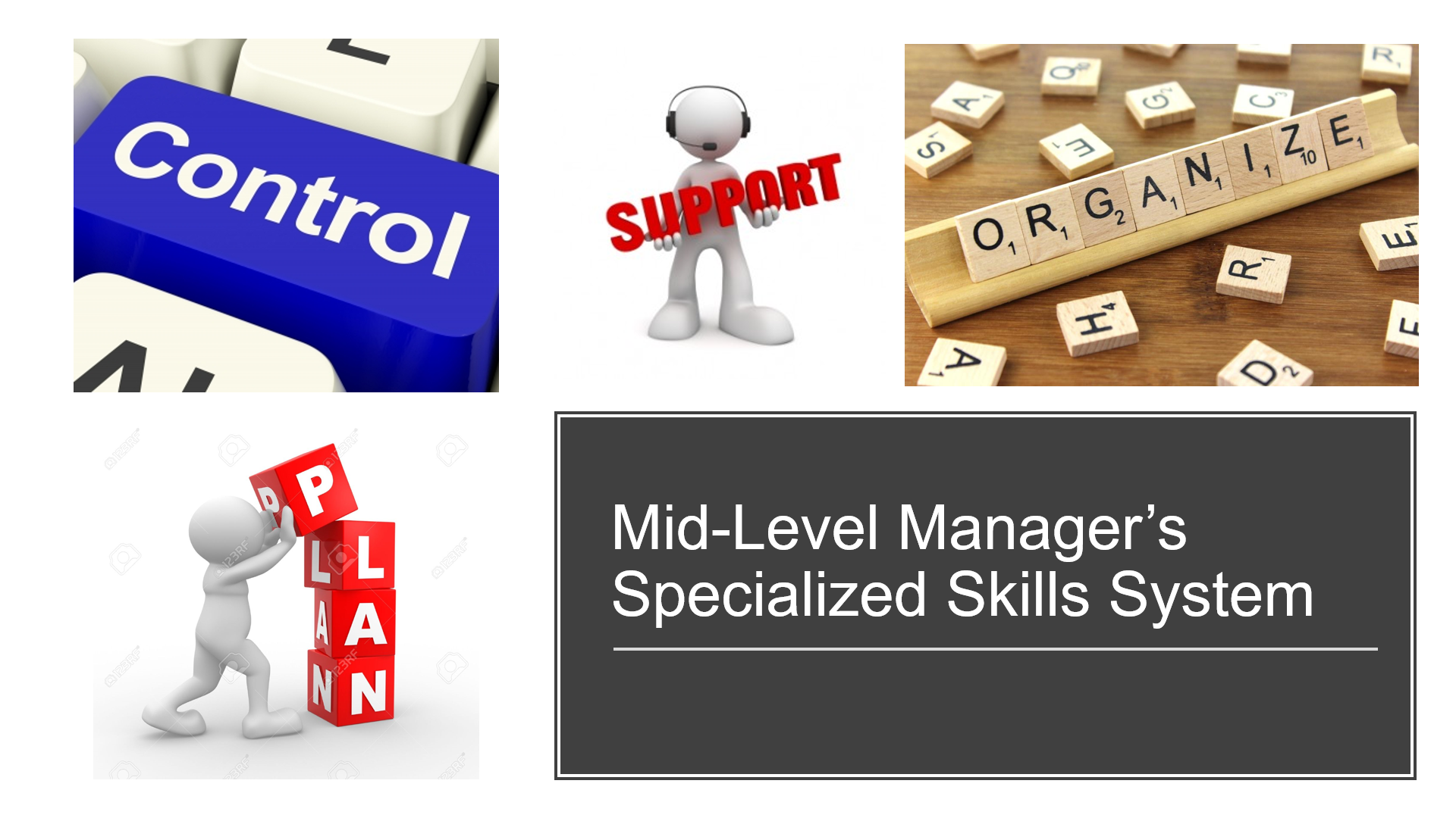 Mid-Level Managers Certification, Specialized Skills System